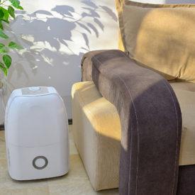Elektrische Luftentfeuchter sinnvoll? – Der Test